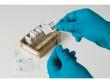 8: Laborkennzeichnung für Objekträger
